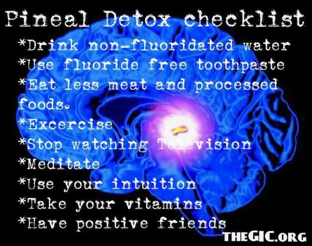Take-care-of-your-Pineal-gland...It-is-your-best-friend-during-this-shift-and-awakening.