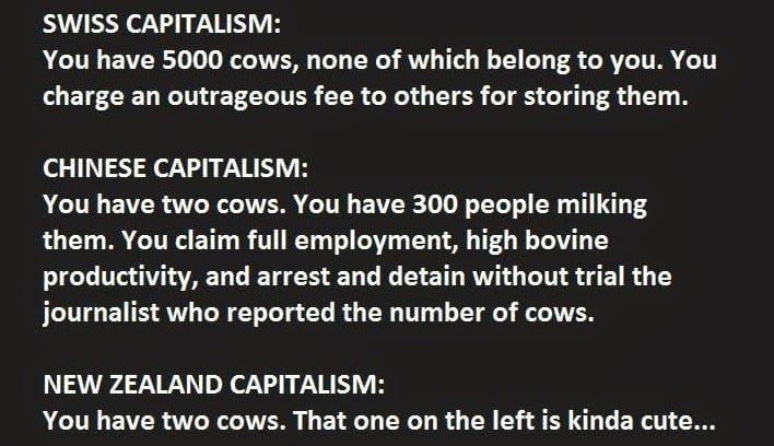 This Guy Just Explained Capitalism Absolutely Perfectly. (5)