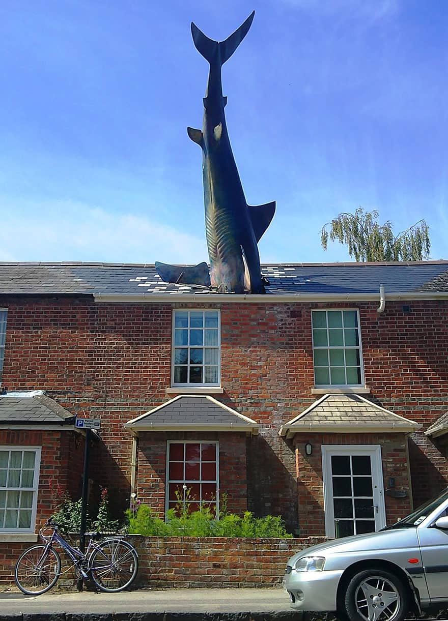The Shark, Oxford, UK