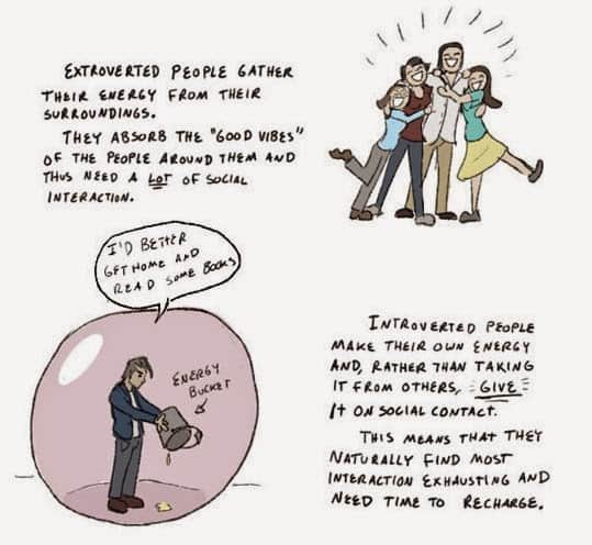 This_Is_How_To_Interact_With_The_Introverted_ (1)