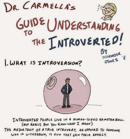 This_Is_How_To_Interact_With_The_Introverted_