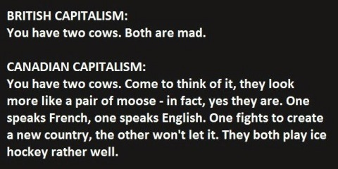 This Guy Just Explained Capitalism Absolutely Perfectly. (3)