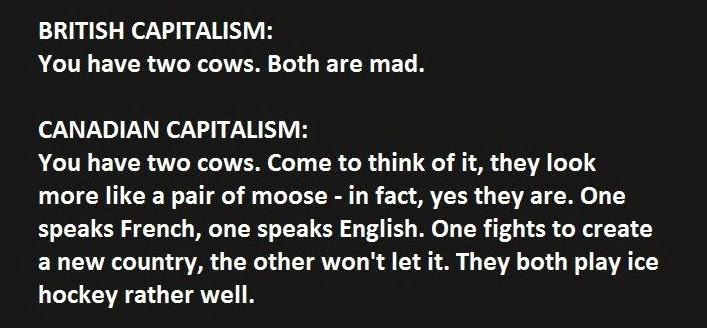 This Guy Just Explained Capitalism Absolutely Perfectly. 3