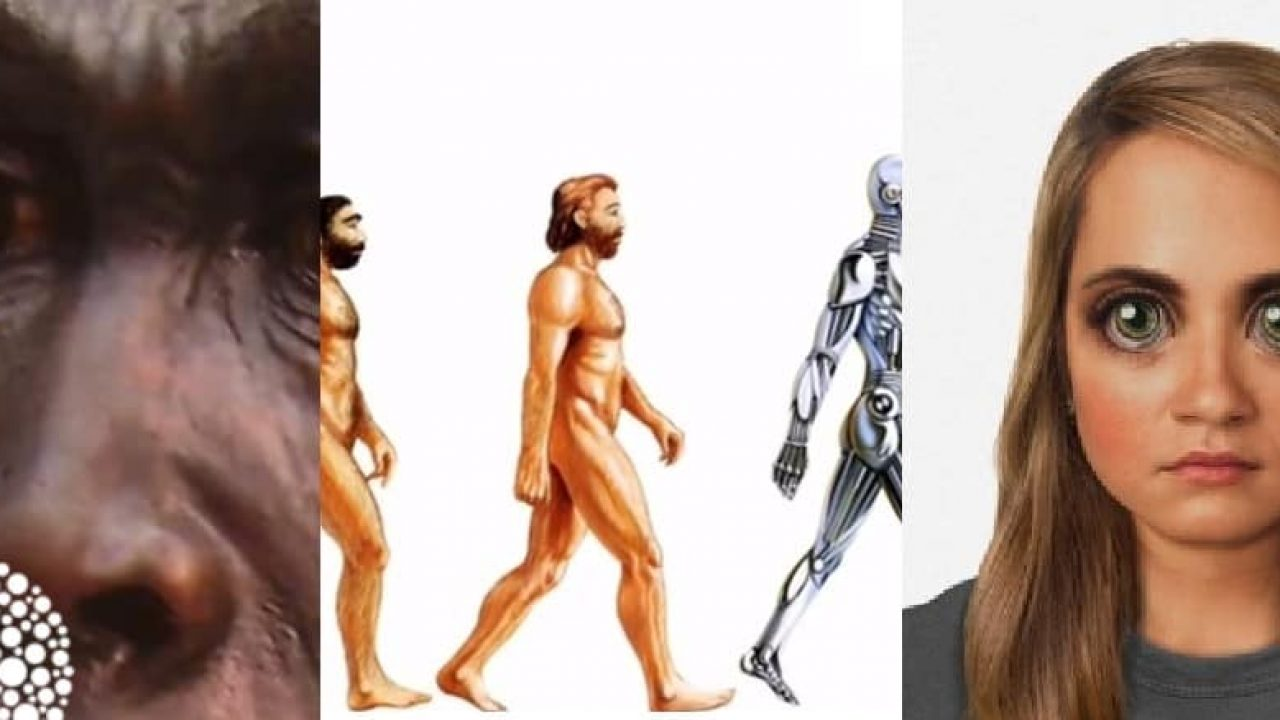 The Future of Human Evolution — Is Technology the only for Humans to Evolve?