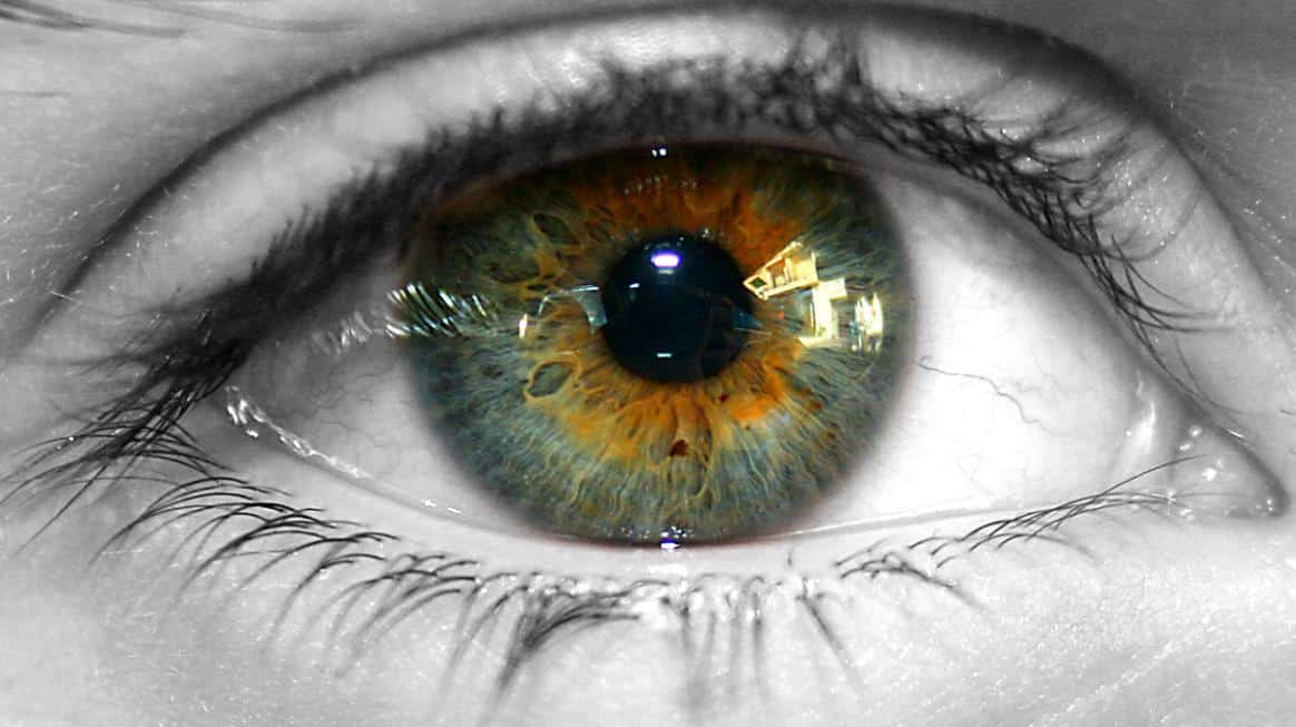 Science Your Eye Color Reveals A Lot About You