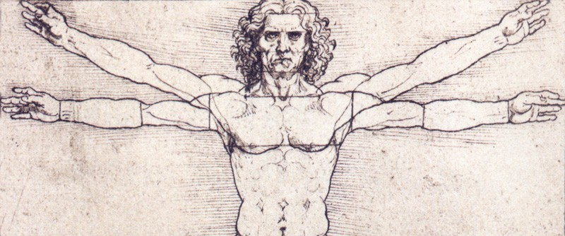 Image result for leonardo vitruvian