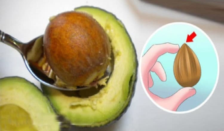 You've Been Throwing Away Avocado Seeds Because No One Told you They Could Fight Cancer 500x261 750x440
