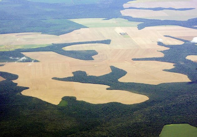 Virgin Amazon rain forest surrounds patches of deforested land prepared for the planting of soybeans, in this aerial photo taken over Mato Grosso state in western Brazil, February 25, 2008. Brazil launched a massive operation aimed at fighting deforestation in the Amazon, a week after townspeople clashed with police that had seized timber from illegal sawmills. REUTERS/Paulo Whitaker (BRAZIL)