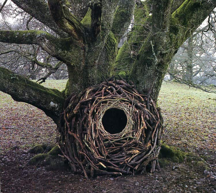 land-art-andy-goldsworthy-2