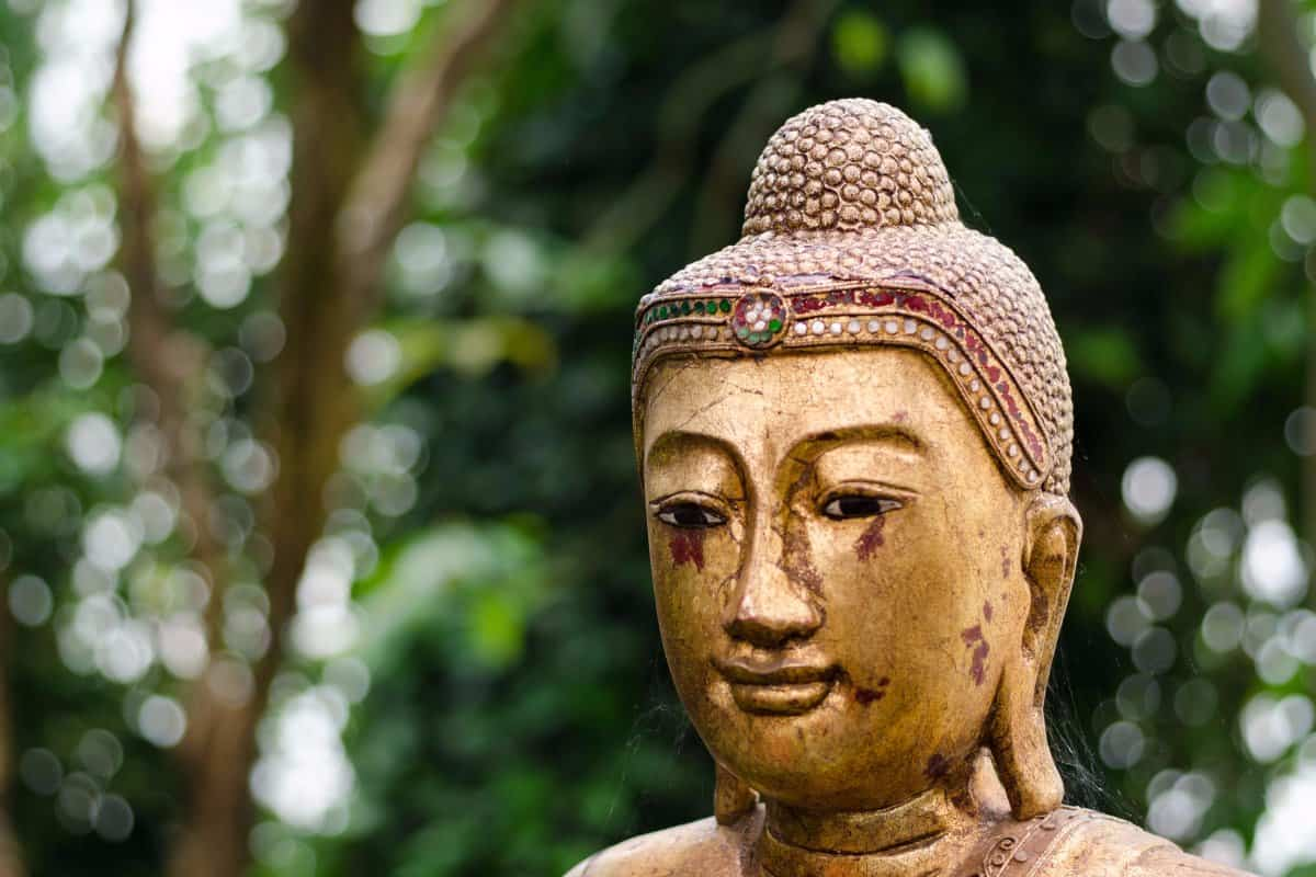 The Most Common Cause of Suffering According to Buddhism (and What You Can Do About it)