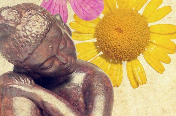 6 Rules of Love According to Buddha