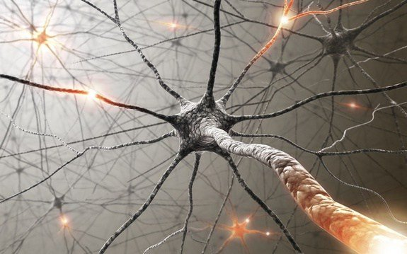 train your brain to let go of habits 10 steps to create new neural pathways2