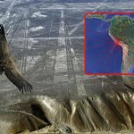 Nazca lines connection