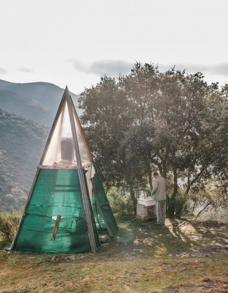The Tiny Eco Village That's Completely Off Grid 6