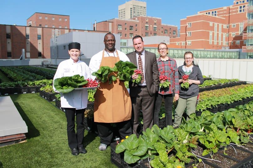boston rooftop farming